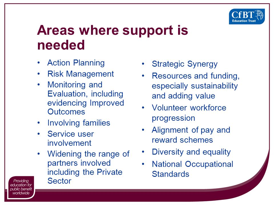 Areas where support is needed Action Planning Risk Management Monitoring and Evaluation, including evidencing Improved Outcomes Involving families Service user involvement Widening the range of partners involved including the Private Sector Strategic Synergy Resources and funding, especially sustainability and adding value Volunteer workforce progression Alignment of pay and reward schemes Diversity and equality National Occupational Standards