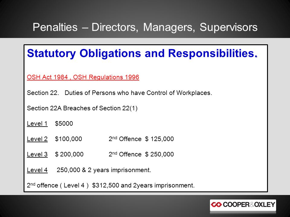 Penalties – Directors, Managers, Supervisors. Statutory Obligations and Responsibilities.