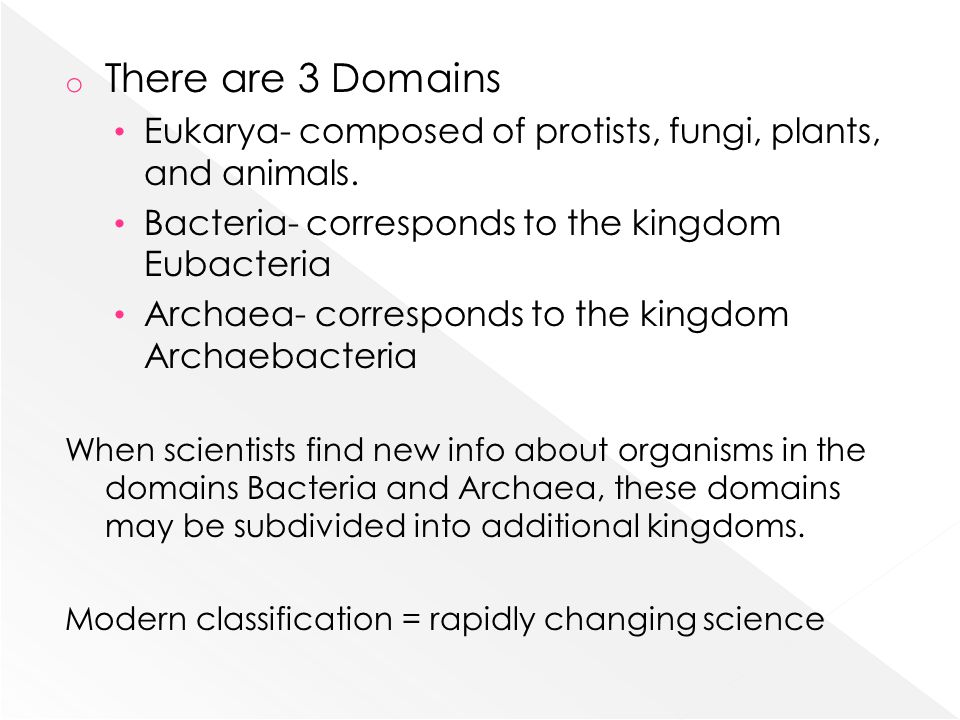 o There are 3 Domains Eukarya- composed of protists, fungi, plants, and animals.