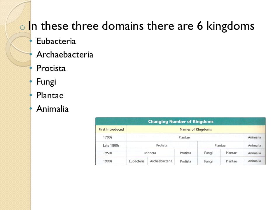 o In these three domains there are 6 kingdoms Eubacteria Archaebacteria Protista Fungi Plantae Animalia
