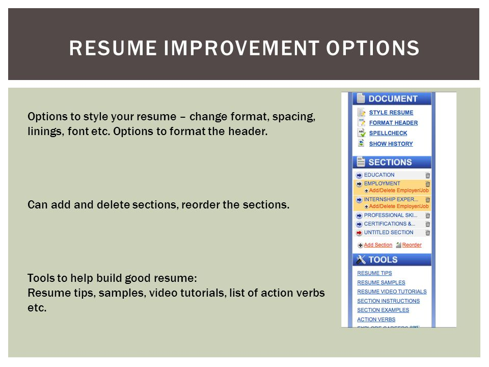 RESUME IMPROVEMENT OPTIONS Options to style your resume – change format, spacing, linings, font etc.