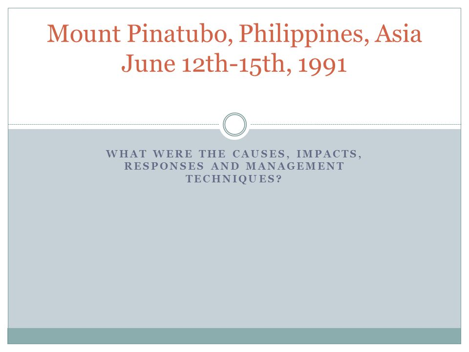 mt pinatubo responses