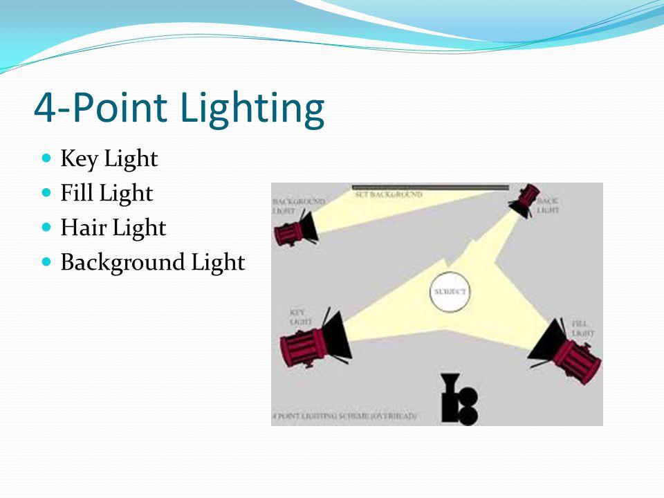 Outstanding Bio 498 698 Lighting Basics Equipment Dynalite Fiber Optics Wiring Digital Resources Xeirawoestevosnl