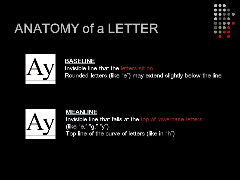 Typography Applied Design Grade 12 Anatomy Of A Letter Baseline