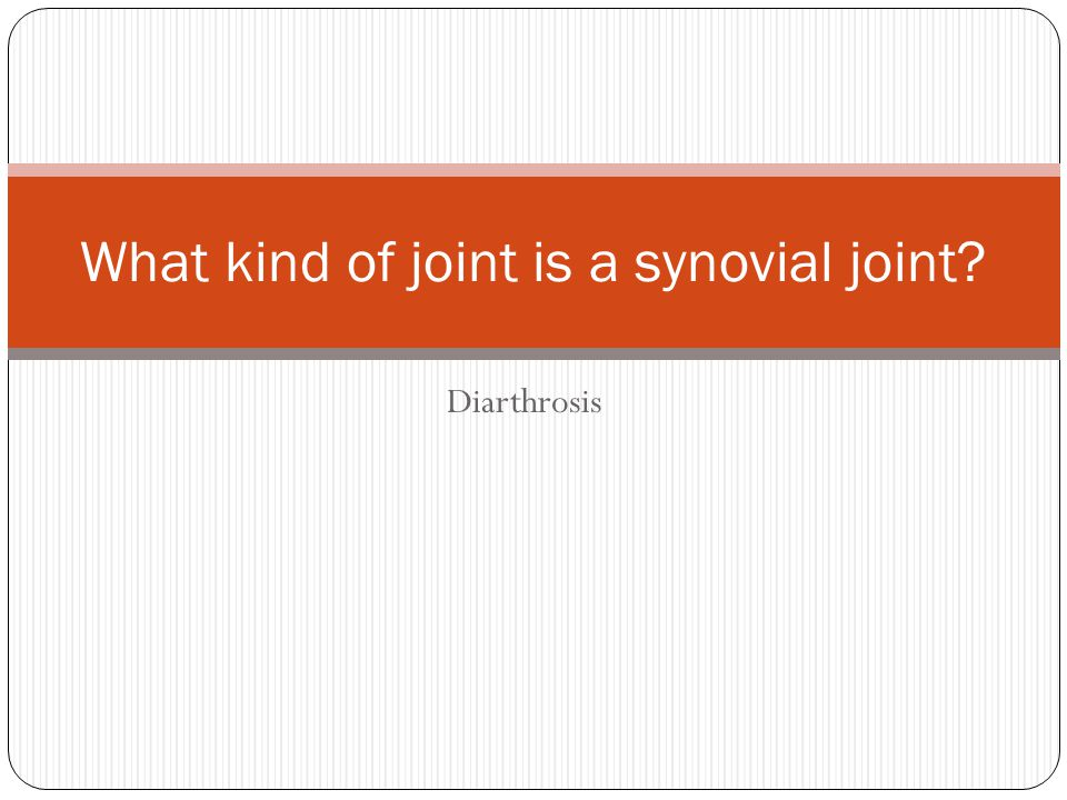 what is synarthrosis