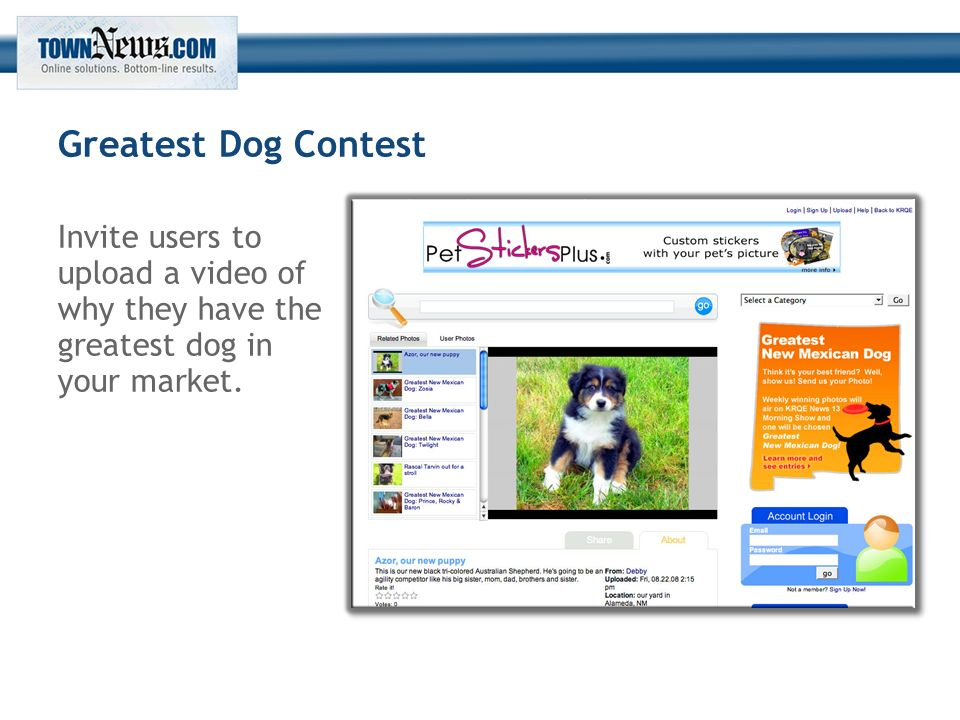 Greatest Dog Contest Invite users to upload a video of why they have the greatest dog in your market.