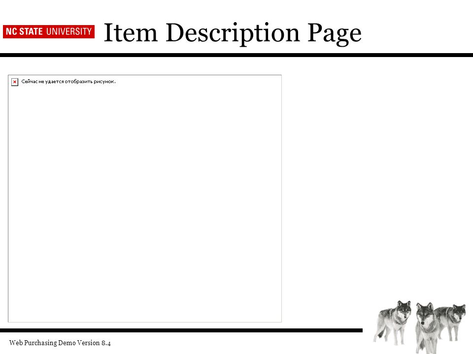 Web Purchasing Demo Version 8.4 Item Description Page