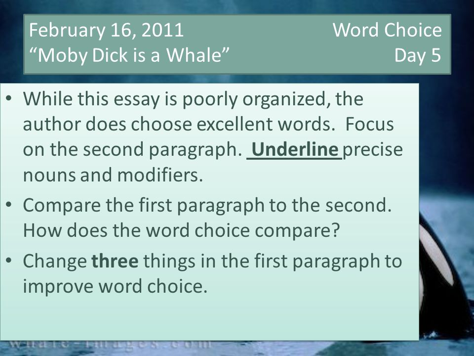 High School Admissions Essay February   Word Choice Moby Dick Is A Whale Day  While This Essay Learn English Essay also From Thesis To Essay Writing February   Word Choice Moby Dick Is A Whale Day  While  How To Write A Essay For High School