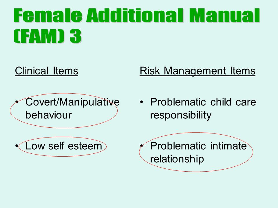 Clinical Items Covert/Manipulative behaviour Low self esteem Risk Management Items Problematic child care responsibility Problematic intimate relationship