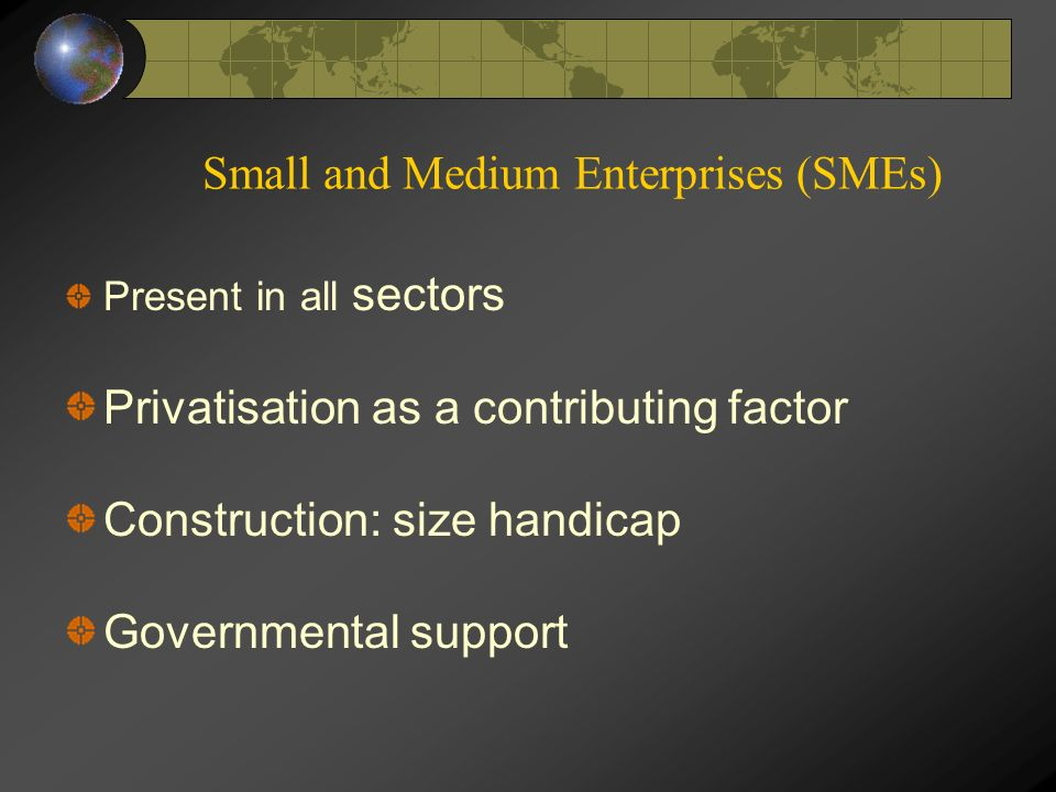 Small and Medium Enterprises (SMEs) Present in all sectors Privatisation as a contributing factor Construction: size handicap Governmental support