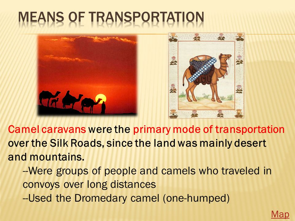 Camel caravans were the primary mode of transportation over the Silk Roads, since the land was mainly desert and mountains.