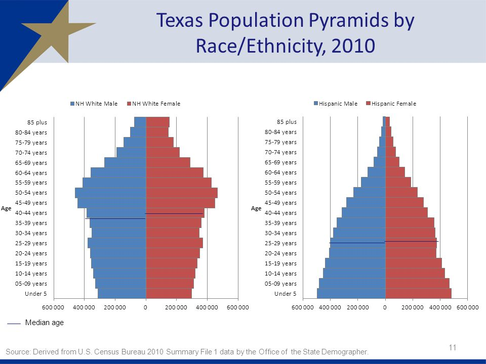11 Texas Population Pyramids by Race/Ethnicity, 2010 Median age Source: Derived from U.S.