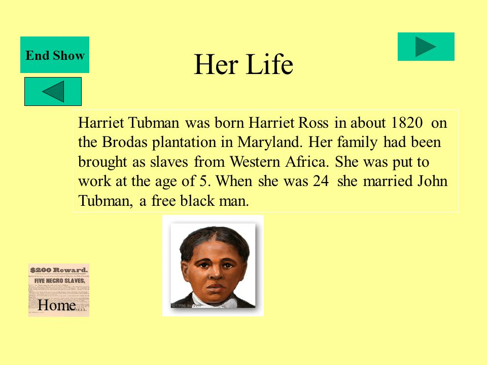 Harriet Tubman An Interactive Lesson By Her Life Timeline. Her Life Harriet Tubman Was Born Ross In About 1820 On The Brodas Plantation. Worksheet. Harriet Tubman Worksheets At Mspartners.co