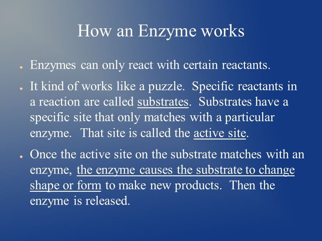 How an Enzyme works ● Enzymes can only react with certain reactants.