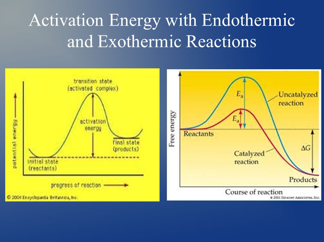 Activation Energy with Endothermic and Exothermic Reactions