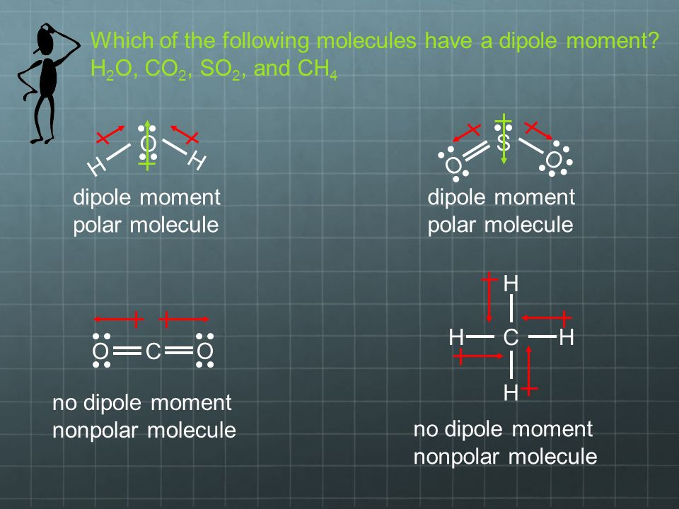 Which of the following molecules have a dipole moment.