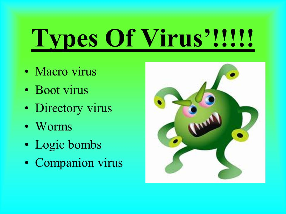 Types Of Virus'!!!!! Macro virus Boot virus Directory virus Worms Logic bombs Companion virus