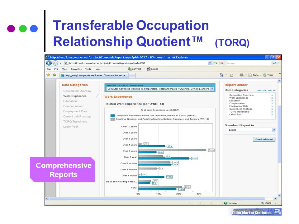 Transferable Occupation Relationship Quotient™ (TORQ) Comprehensive Reports