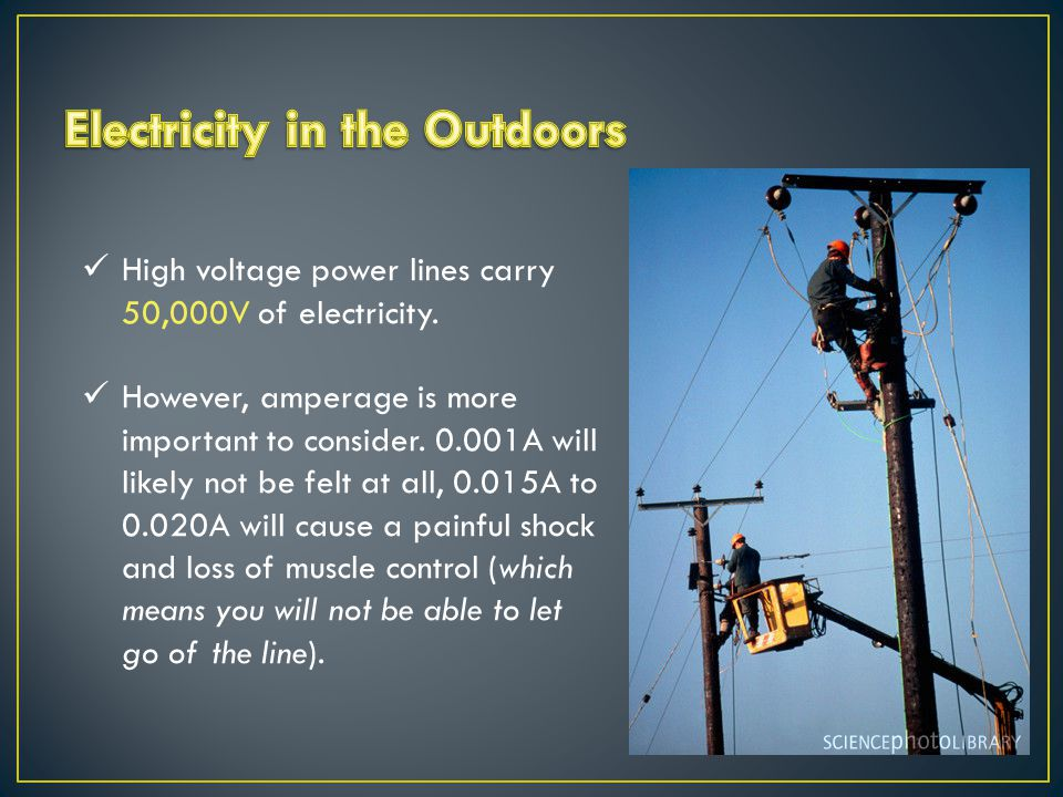 High voltage power lines carry 50,000V of electricity.