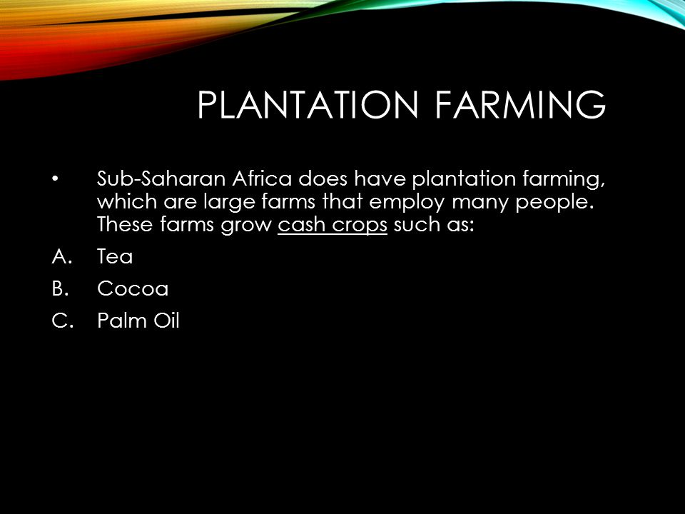 PLANTATION FARMING Sub-Saharan Africa does have plantation farming, which are large farms that employ many people.