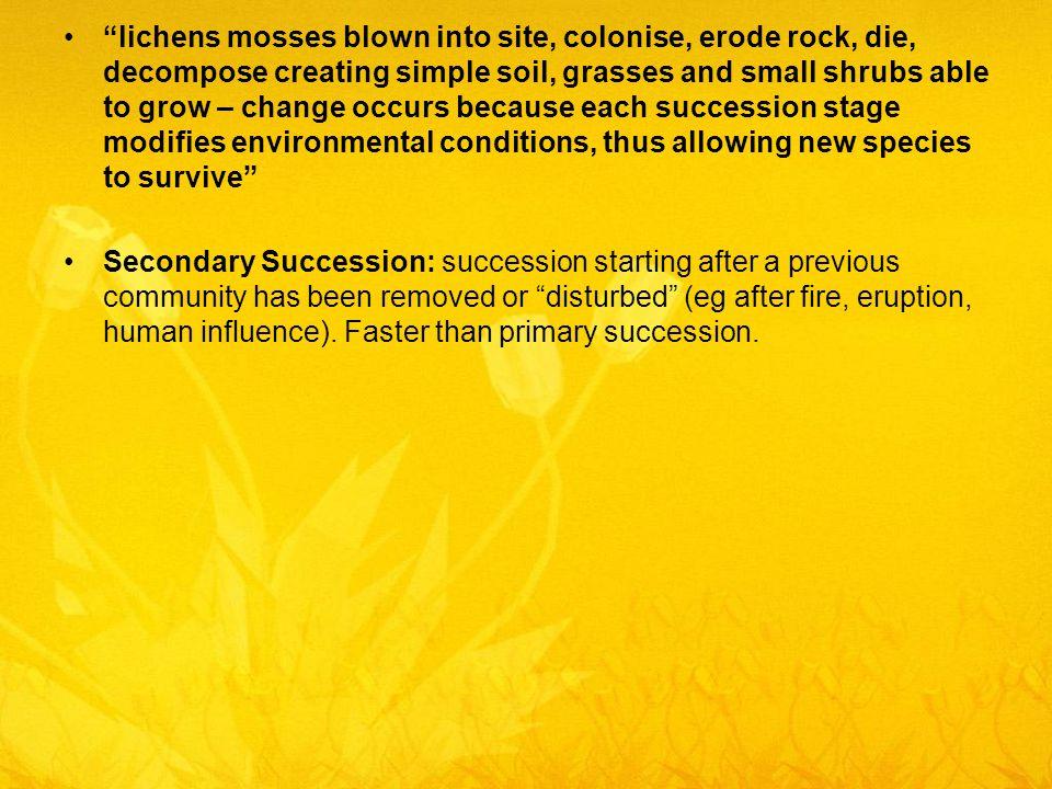 succession occurs because _______