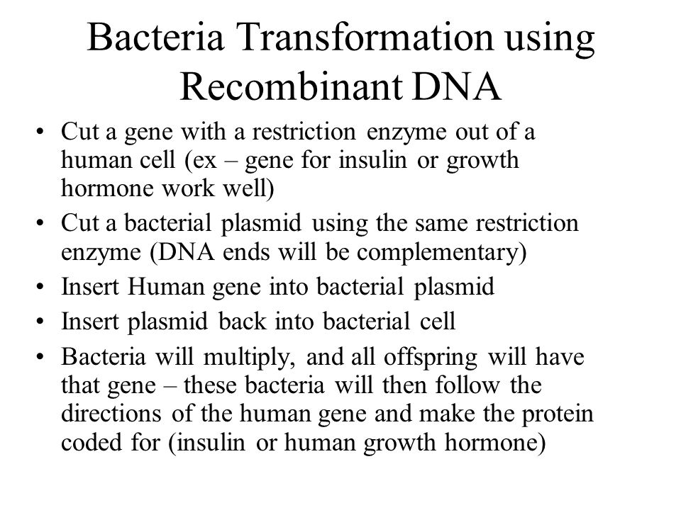 Bacteria Transformation using Recombinant DNA Cut a gene with a restriction enzyme out of a human cell (ex – gene for insulin or growth hormone work well) Cut a bacterial plasmid using the same restriction enzyme (DNA ends will be complementary) Insert Human gene into bacterial plasmid Insert plasmid back into bacterial cell Bacteria will multiply, and all offspring will have that gene – these bacteria will then follow the directions of the human gene and make the protein coded for (insulin or human growth hormone)