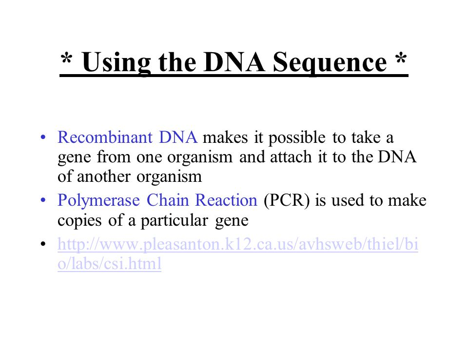 * Using the DNA Sequence * Recombinant DNA makes it possible to take a gene from one organism and attach it to the DNA of another organism Polymerase Chain Reaction (PCR) is used to make copies of a particular gene   o/labs/csi.htmlhttp://  o/labs/csi.html