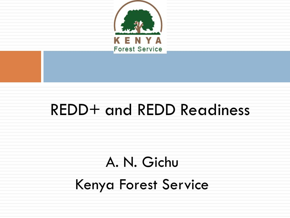 A. N. Gichu Kenya Forest Service REDD+ and REDD Readiness