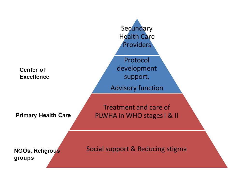Center of Excellence Primary Health Care Secundary Health Care Providers Protocol development support, Advisory function Treatment and care of PLWHA in WHO stages I & II Social support & Reducing stigma NGOs, Religious groups