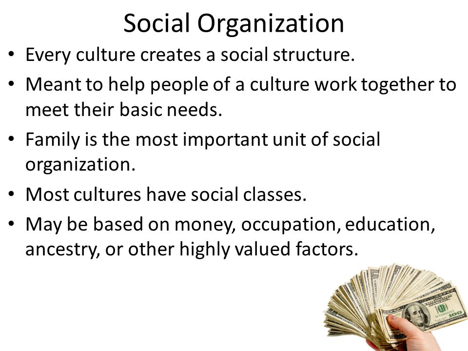 Social Organization Every culture creates a social structure.