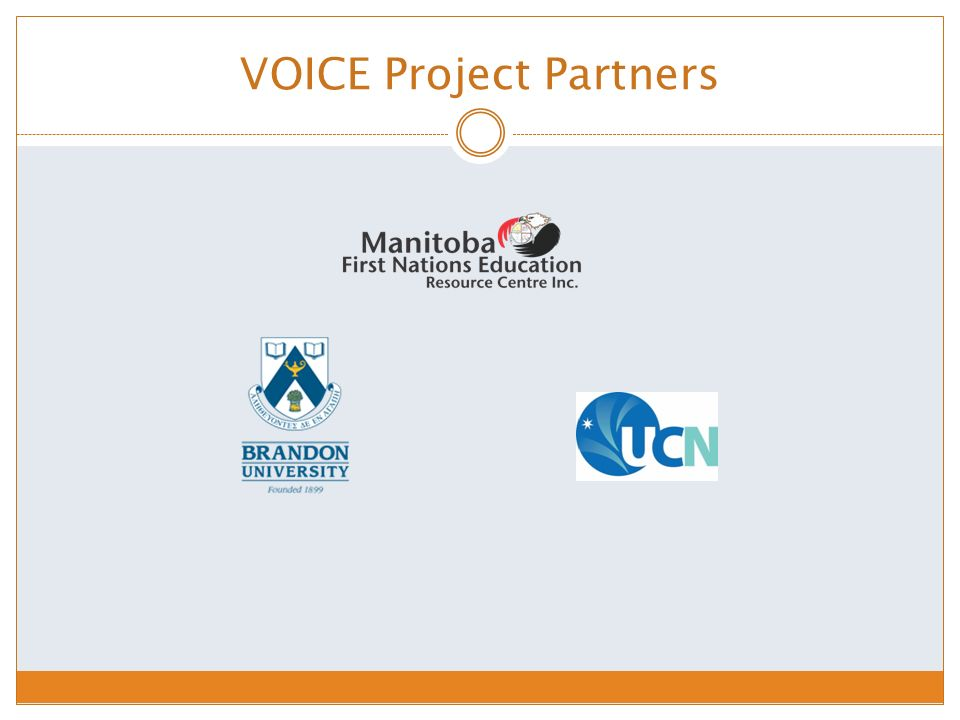 VOICE Project Partners
