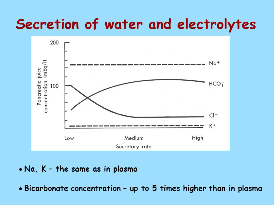 Secretion of water and electrolytes  Na, K – the same as in plasma  Bicarbonate concentration – up to 5 times higher than in plasma