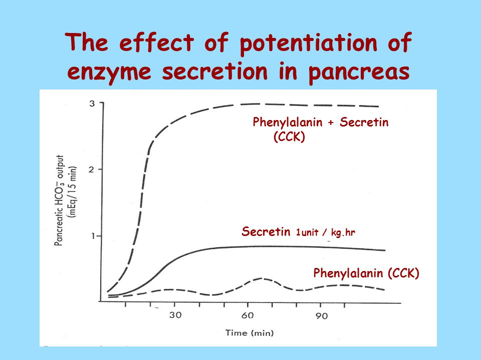 The effect of potentiation of enzyme secretion in pancreas Phenylalanin + Secretin (CCK) Secretin 1unit / kg.hr Phenylalanin (CCK)