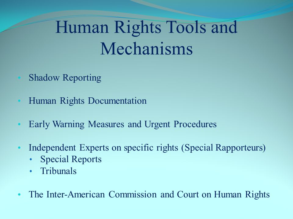 Human Rights Tools and Mechanisms Shadow Reporting Human Rights Documentation Early Warning Measures and Urgent Procedures Independent Experts on specific rights (Special Rapporteurs) Special Reports Tribunals The Inter-American Commission and Court on Human Rights