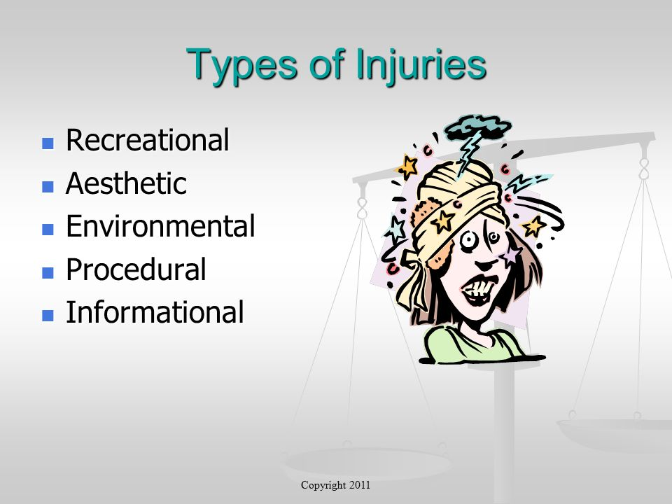 Types of Injuries Recreational Recreational Aesthetic Aesthetic Environmental Environmental Procedural Procedural Informational Informational Copyright 2011