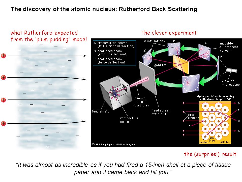 The discovery of the atomic nucleus: Rutherford Back Scattering what Rutherford expected from the plum pudding model the clever experiment the (surprise!) result It was almost as incredible as if you had fired a 15-inch shell at a piece of tissue paper and it came back and hit you.