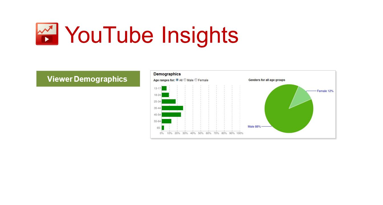 Viewer Demographics YouTube Insights