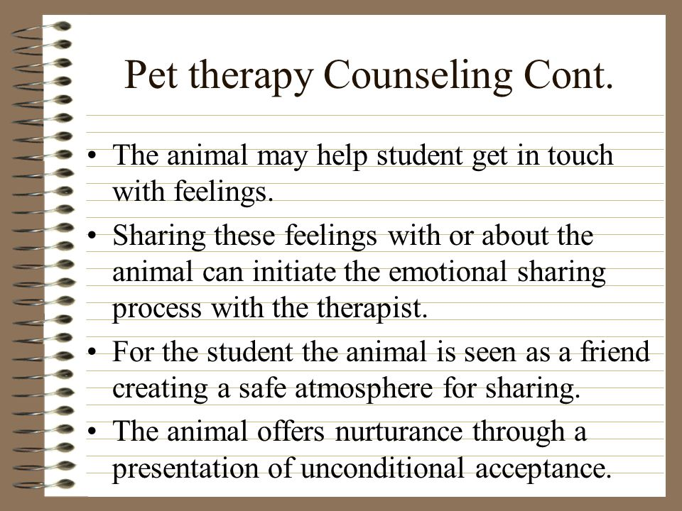 Pet therapy Counseling Cont. The animal may help student get in touch with feelings.