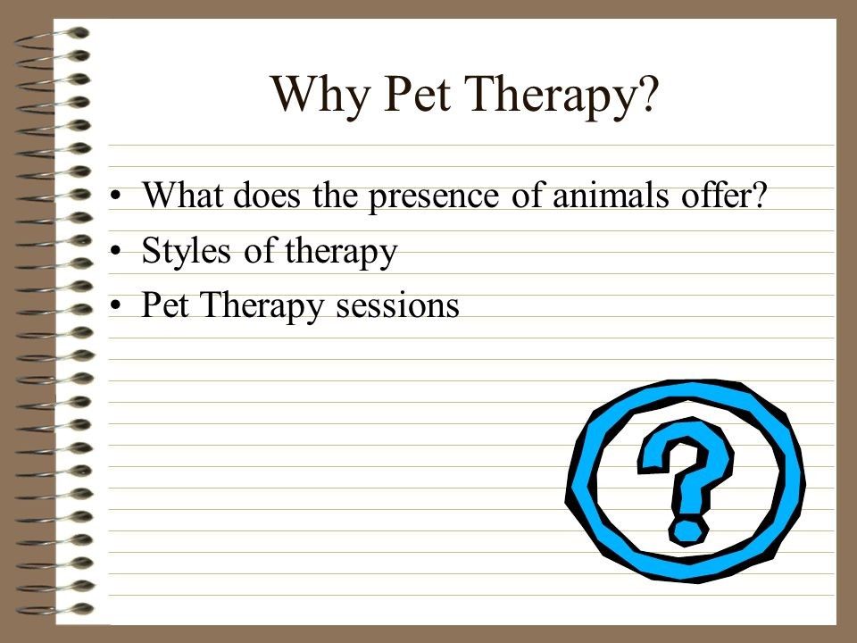 Why Pet Therapy What does the presence of animals offer Styles of therapy Pet Therapy sessions