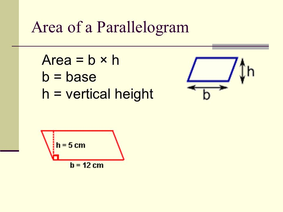 Area of a Rectangle Area = l × h l = length h = height