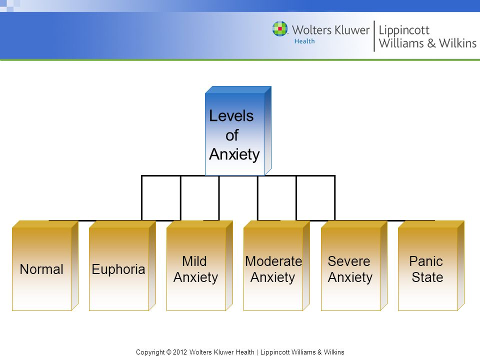 Copyright © 2012 Wolters Kluwer Health | Lippincott Williams & Wilkins Levels of Anxiety NormalEuphoria Moderate Anxiety Severe Anxiety Panic State Mild Anxiety
