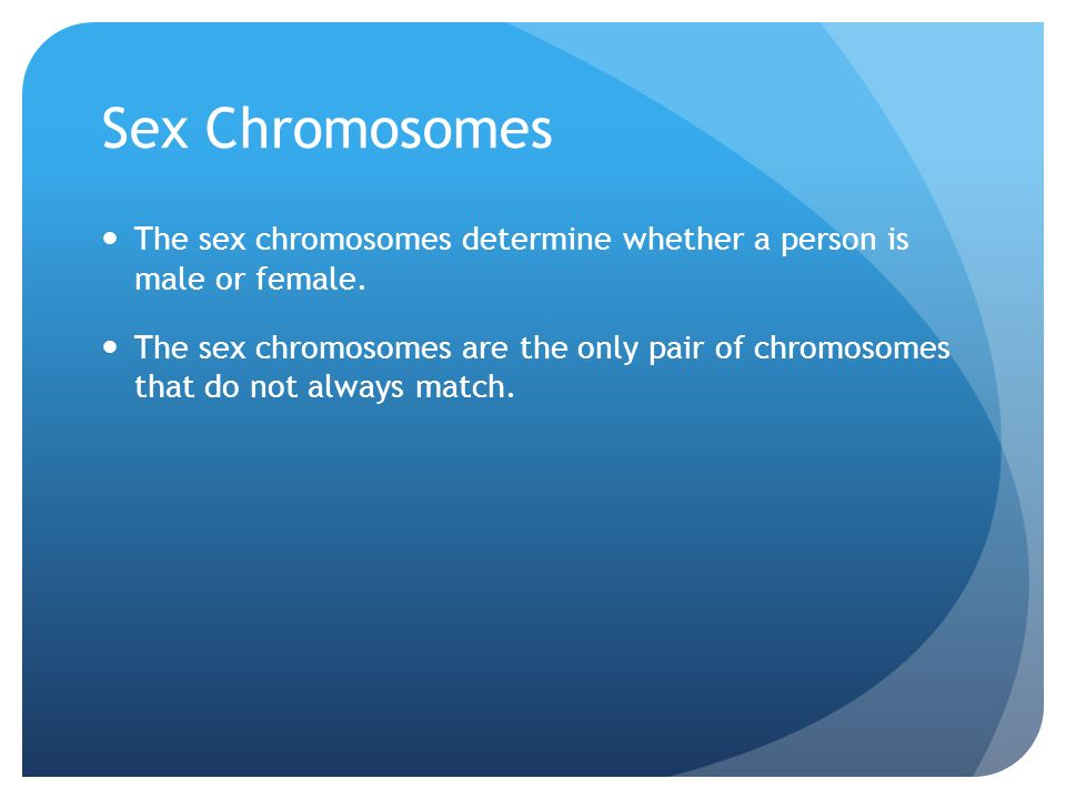 Sex Chromosomes The sex chromosomes determine whether a person is male or female.