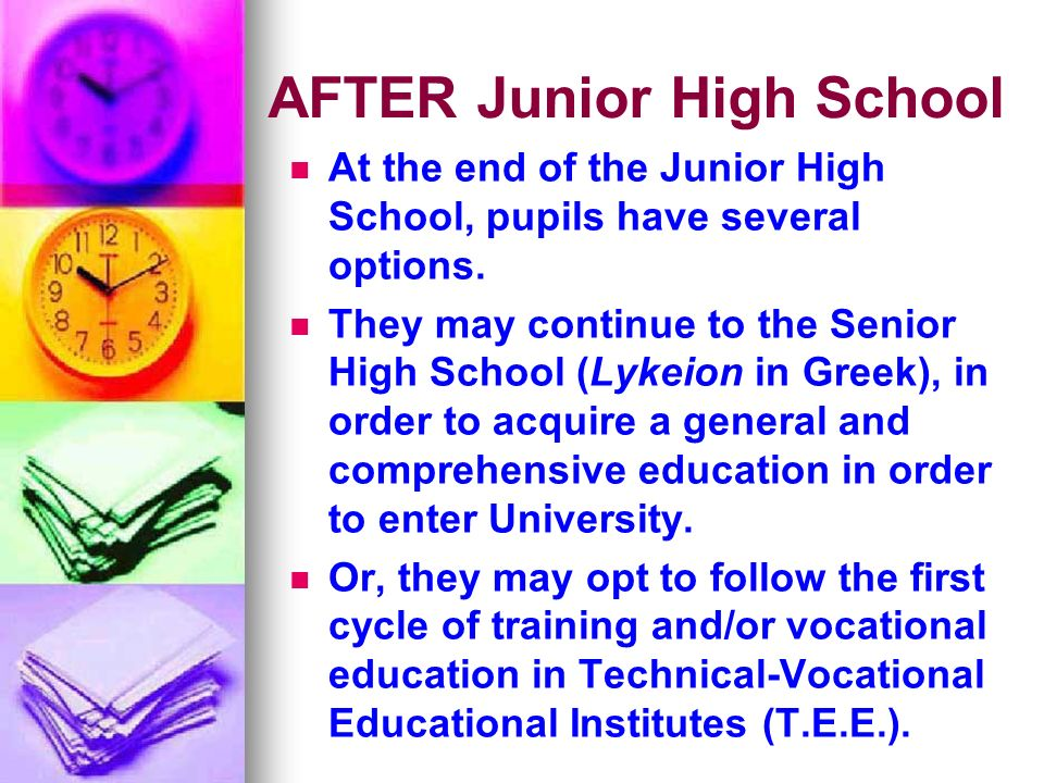 AFTER Junior High School At the end of the Junior High School, pupils have several options.