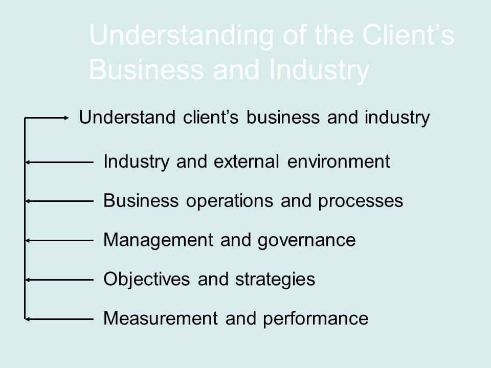 Understanding of the Client's Business and Industry Industry and external environment Business operations and processes Management and governance Objectives and strategies Measurement and performance Understand client's business and industry