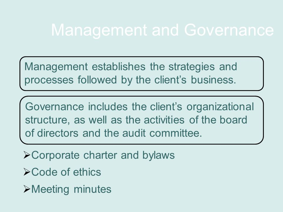 Management and Governance Management establishes the strategies and processes followed by the client's business.
