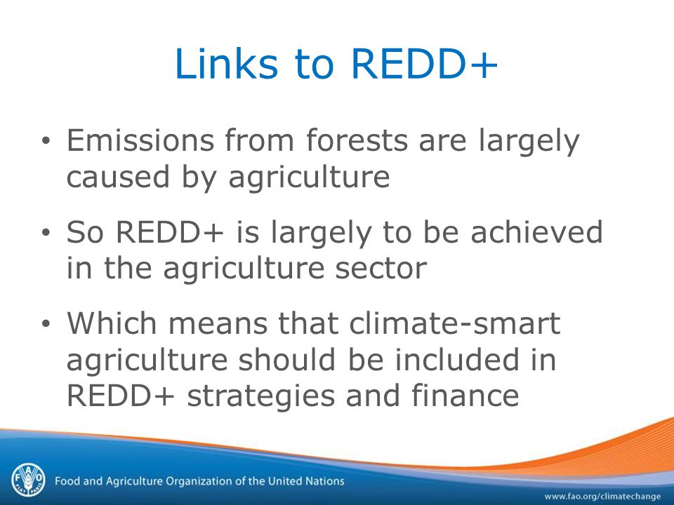 Links to REDD+ Emissions from forests are largely caused by agriculture So REDD+ is largely to be achieved in the agriculture sector Which means that climate-smart agriculture should be included in REDD+ strategies and finance