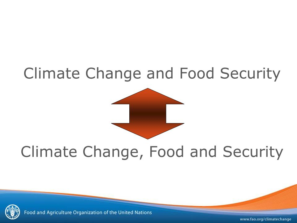 Climate Change and Food Security Climate Change, Food and Security