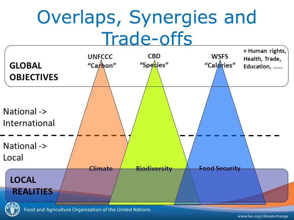 Overlaps, Synergies and Trade-offs National -> International National -> Local Climate UNFCCC Carbon Biodiversity CBD Species Food Security WSFS Calories + Human rights, Health, Trade, Education,.....