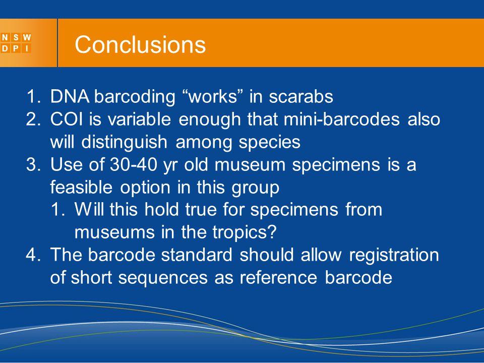 Using museum specimens to identify MOTUs in larval scarab