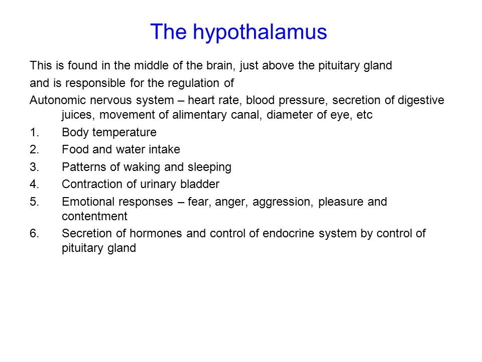 The hypothalamus This is found in the middle of the brain, just above the pituitary gland and is responsible for the regulation of Autonomic nervous system – heart rate, blood pressure, secretion of digestive juices, movement of alimentary canal, diameter of eye, etc 1.Body temperature 2.Food and water intake 3.Patterns of waking and sleeping 4.Contraction of urinary bladder 5.Emotional responses – fear, anger, aggression, pleasure and contentment 6.Secretion of hormones and control of endocrine system by control of pituitary gland